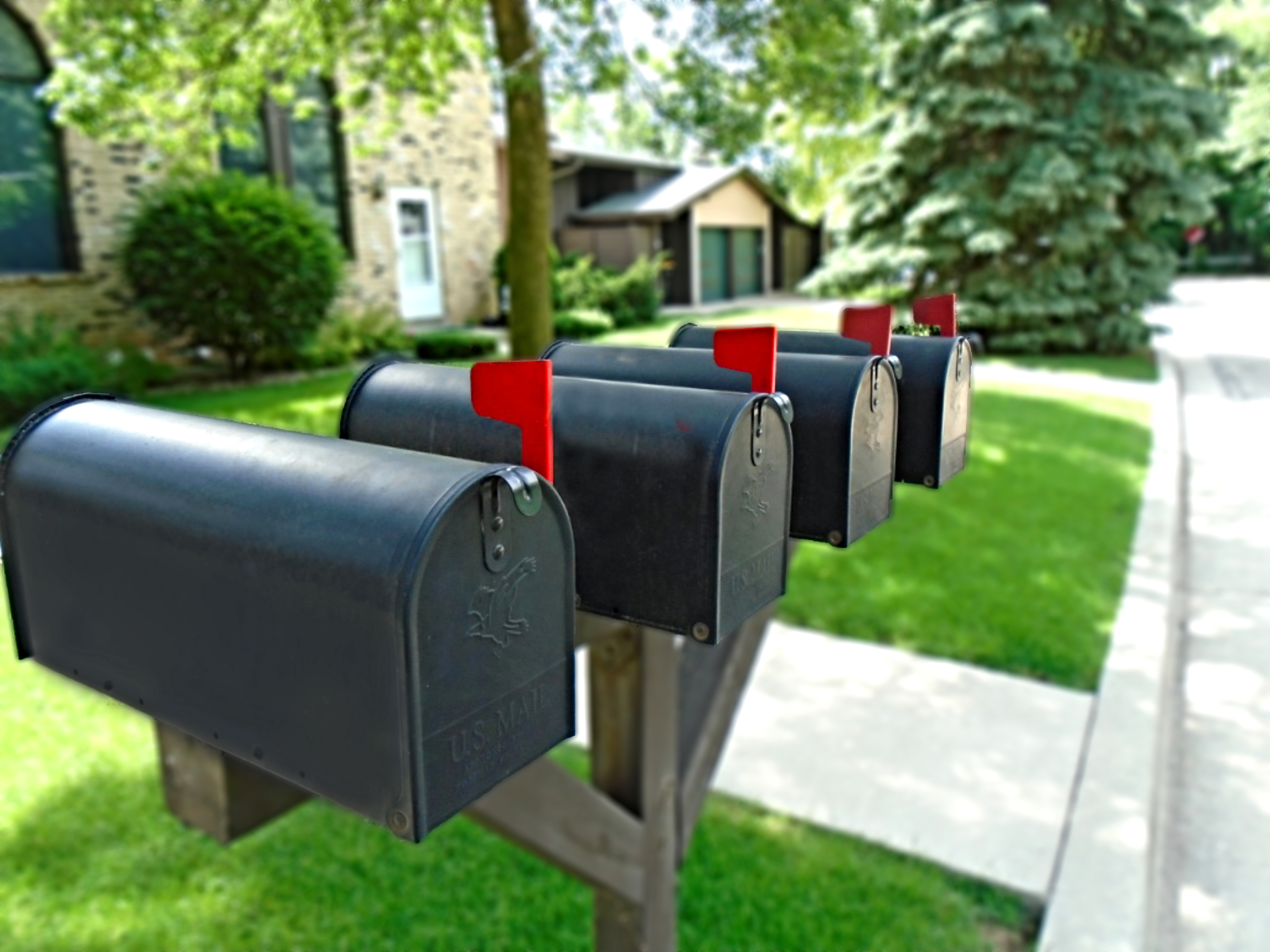 Order Saturation Mailing