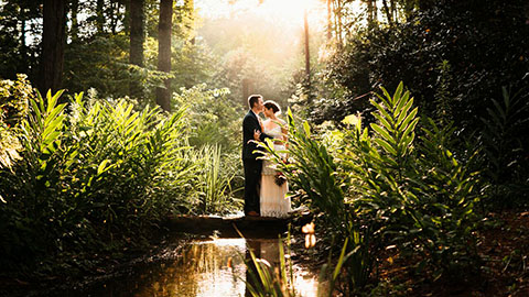 aldridge gardens weddings