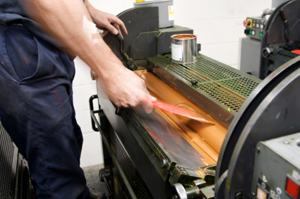 Offset & Digital Printing