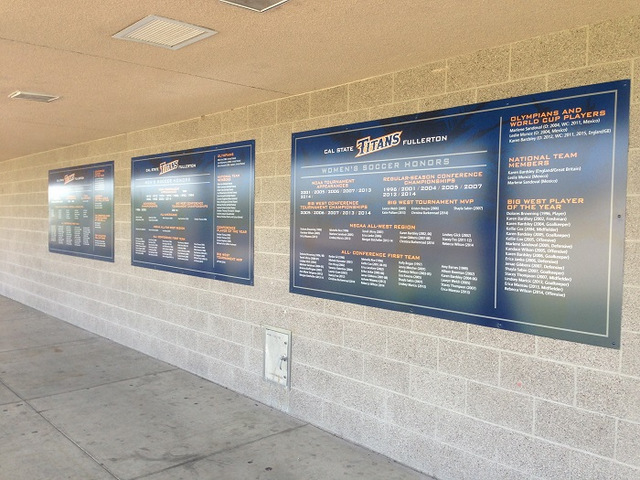 Acrylic panels for athletic fields in Orange County