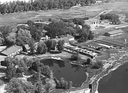 Delta Marsh - 1950's