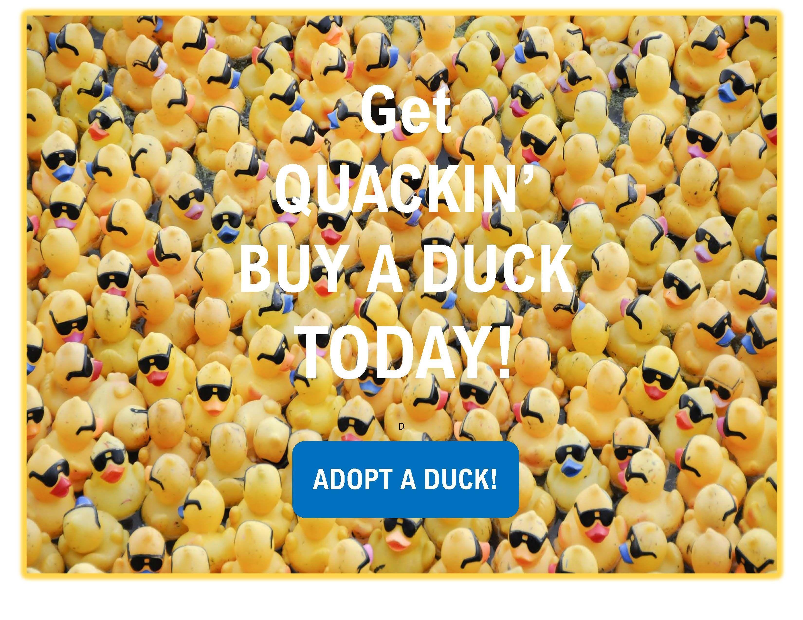 Get Quackin & Adopt a Duck!