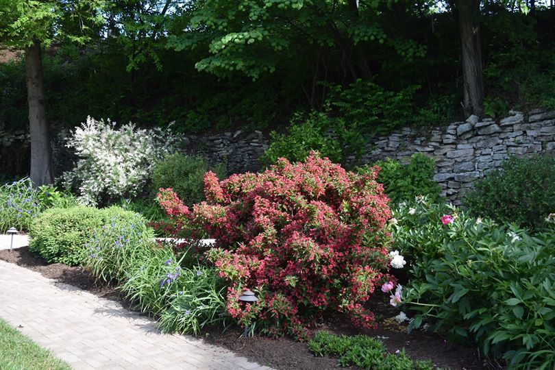 13. Emma Miller Memorial Tranquility Garden