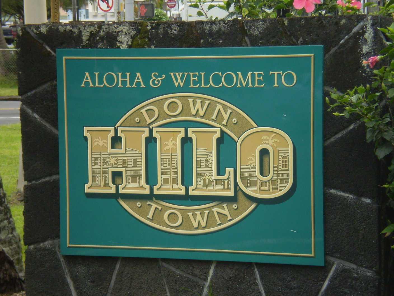 Community Voices - Hilo