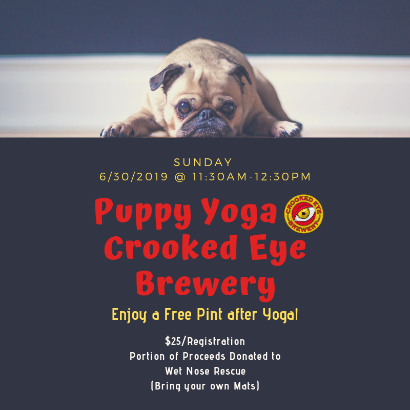 Puppy Yoga @ Crooked Eye Brewery