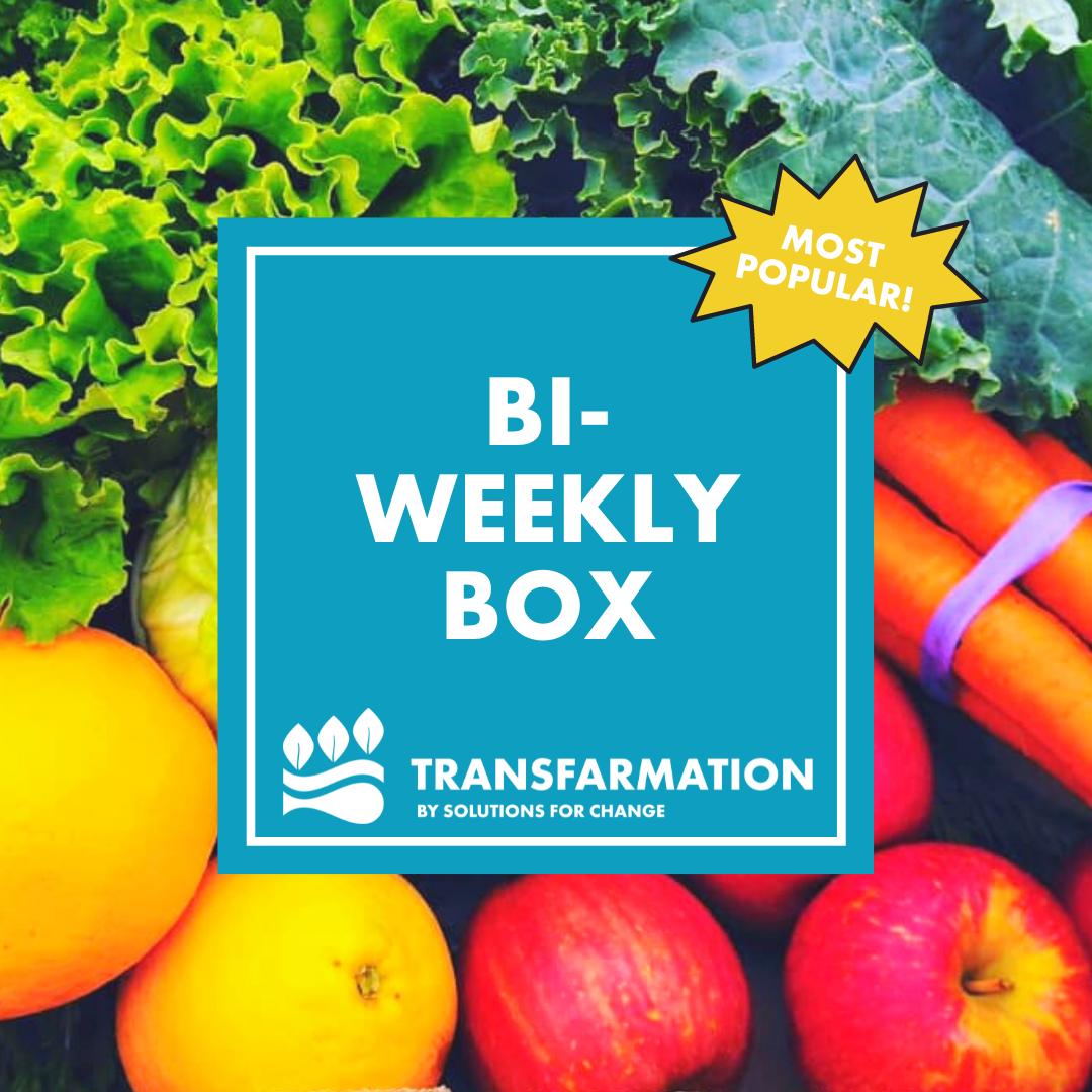 Bi-weekly subscription box