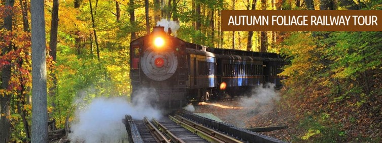 Autumn Foliage Railway Tour