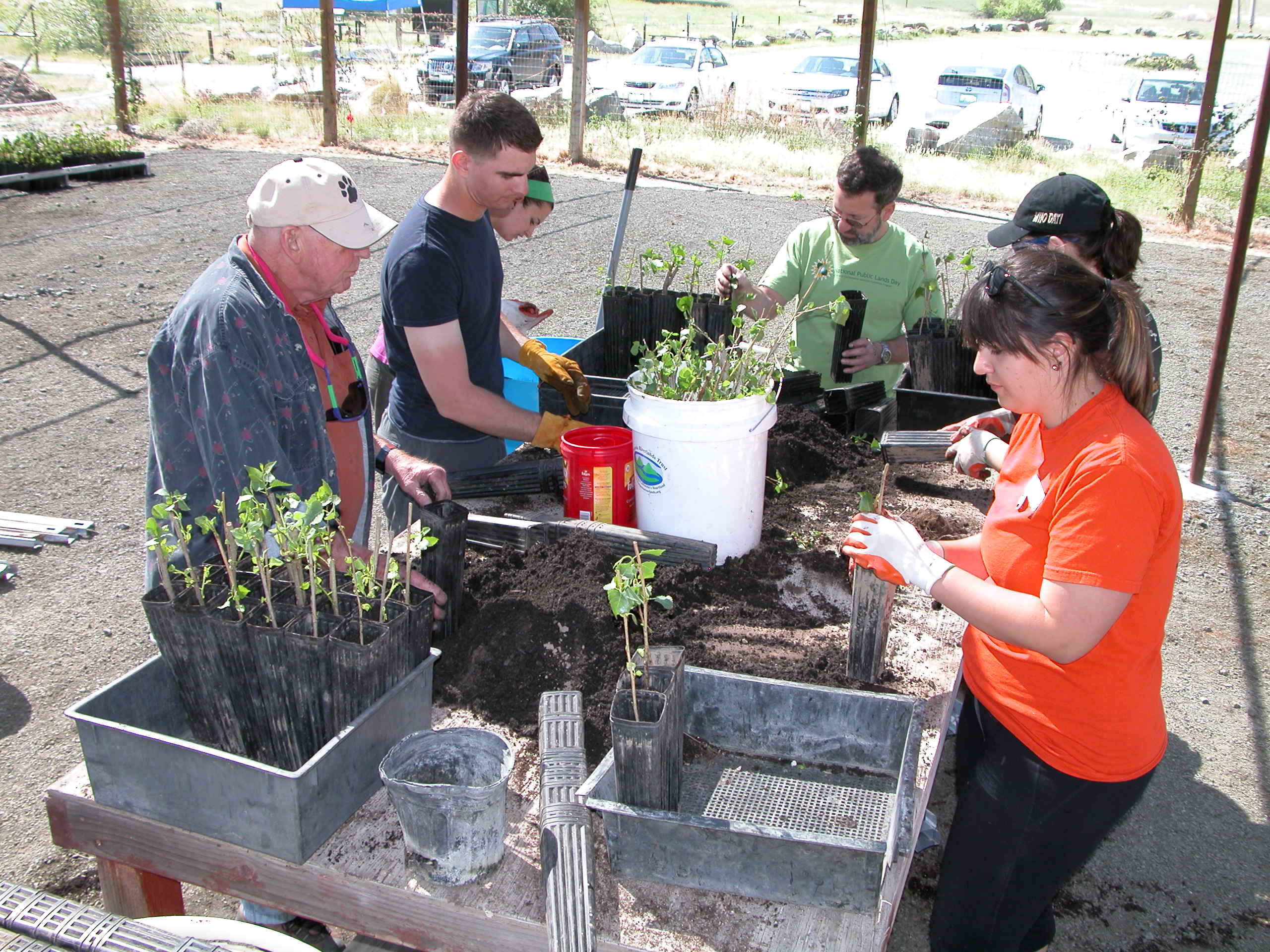 Volunteer this summer at KOP, Dry Creek