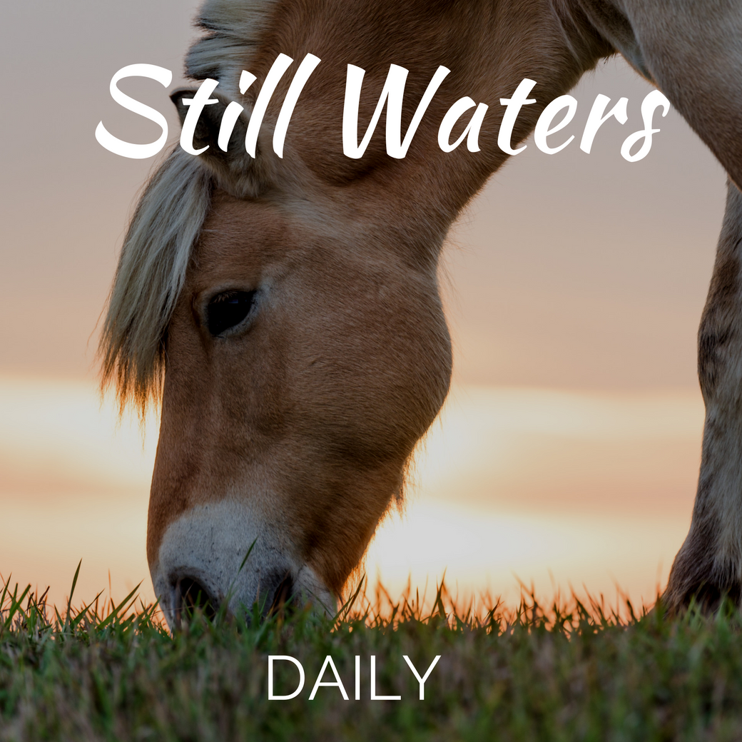 Still Waters Daily App for Android