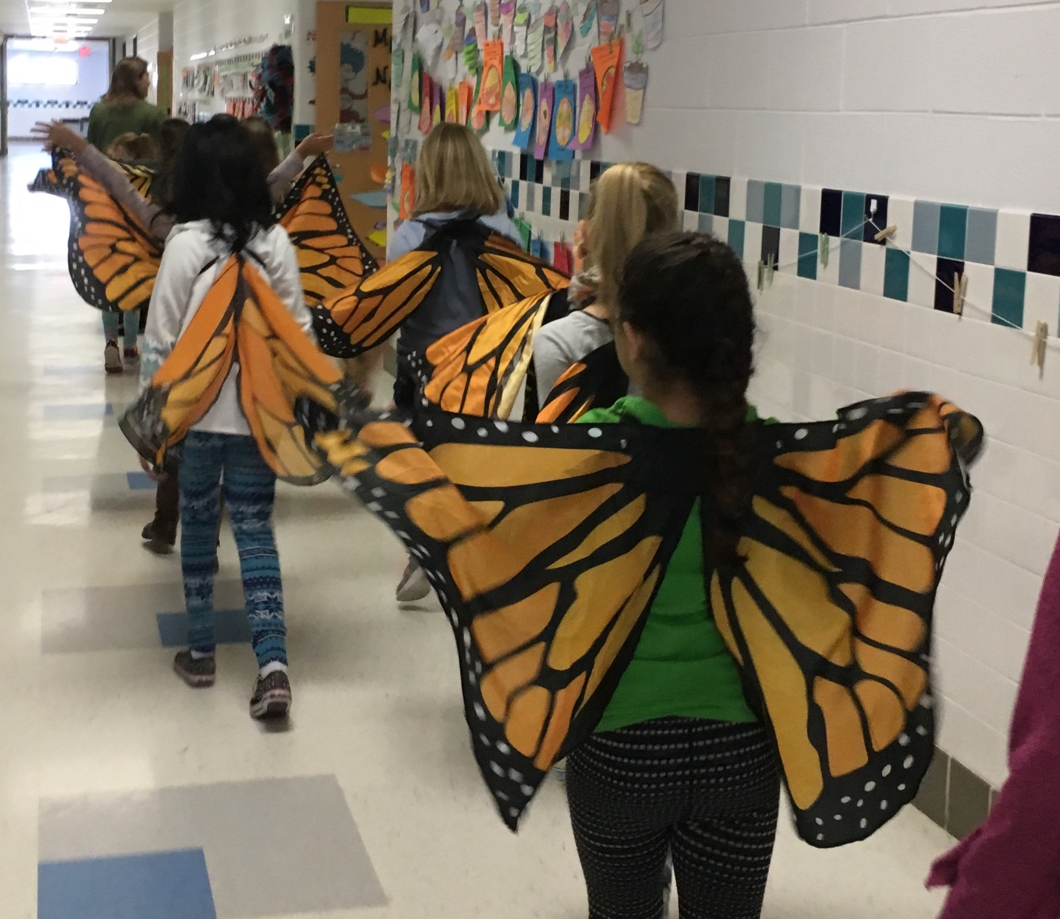 Your $25 gift helps cover the cost of turning our popular Meadows, Milkweed, and Monarchs, Oh My! Program into a virtual learning program for 2nd graders.
