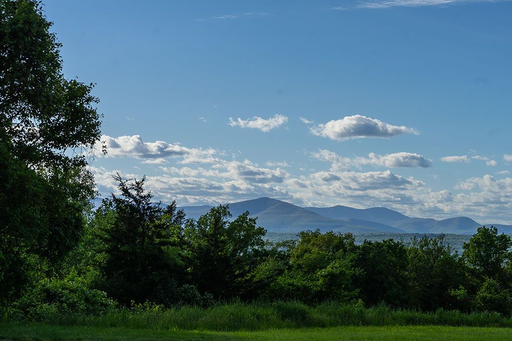 View of the Catskills by Maryalice Citera