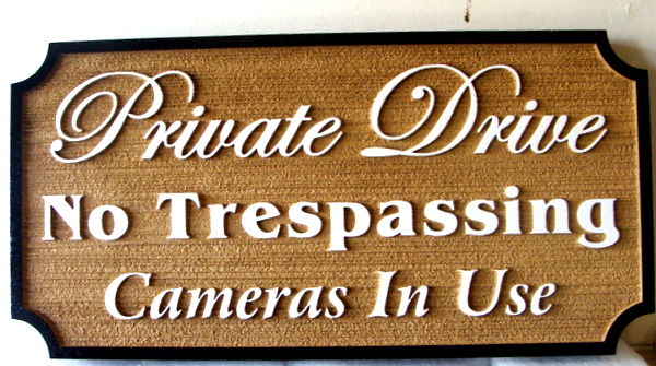 "H17112 - Carved and Sandblasted HDU ""Private Drive / No Trespassing / Cameras in Use"" Sign"