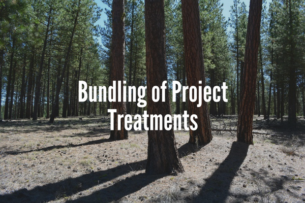 Bundling of Project Treatments