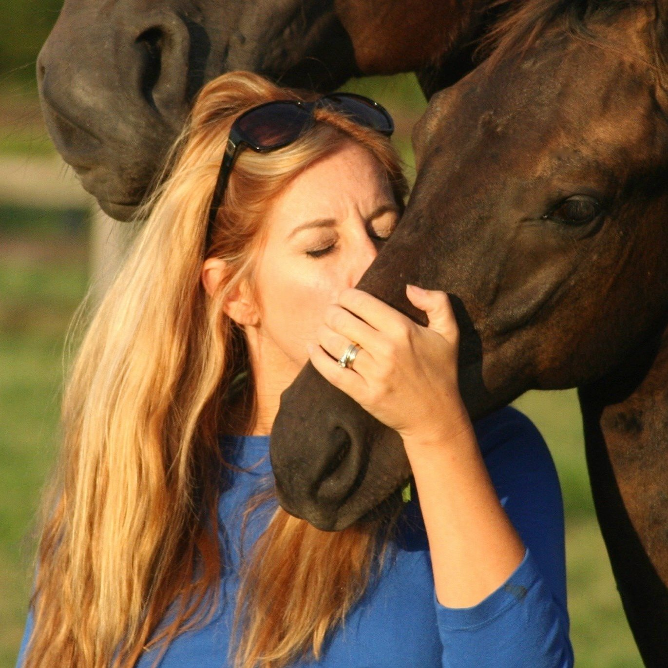 TDF Awards Grant from the Elysium Farm Fund for U.S. Breeder Excellence