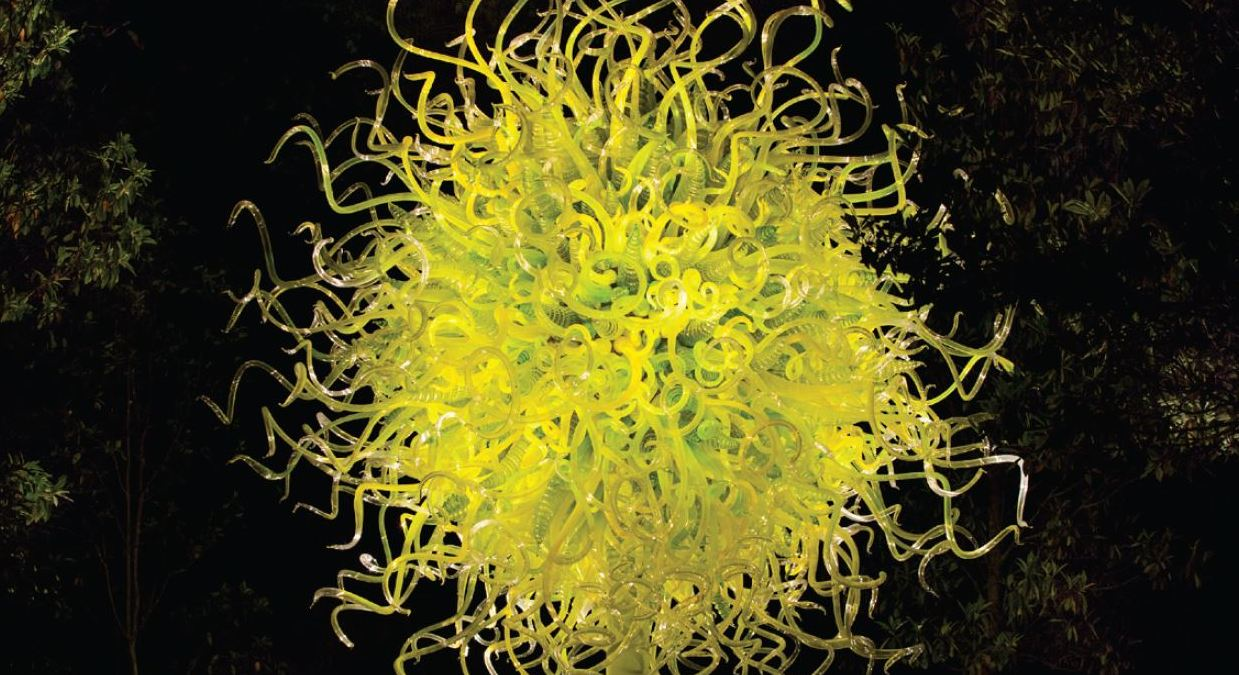 Register for October's CHIHULY at NYBG trip!