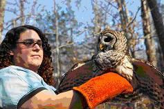 January 19, 2021 - Halley Buckanoff, Veterinary Technician, North Carolina Zoo's Wildlife Rehabilitation Center