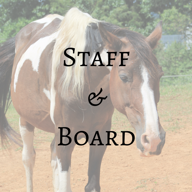 Staff & Board