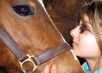 A picture of Bella and her horse