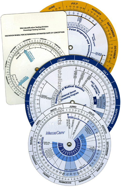 Pregnancy Due Date Calculator Wheel Charts