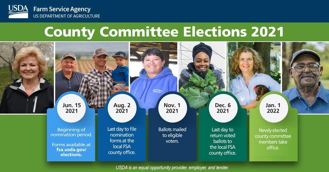 FSA Committee Timeline