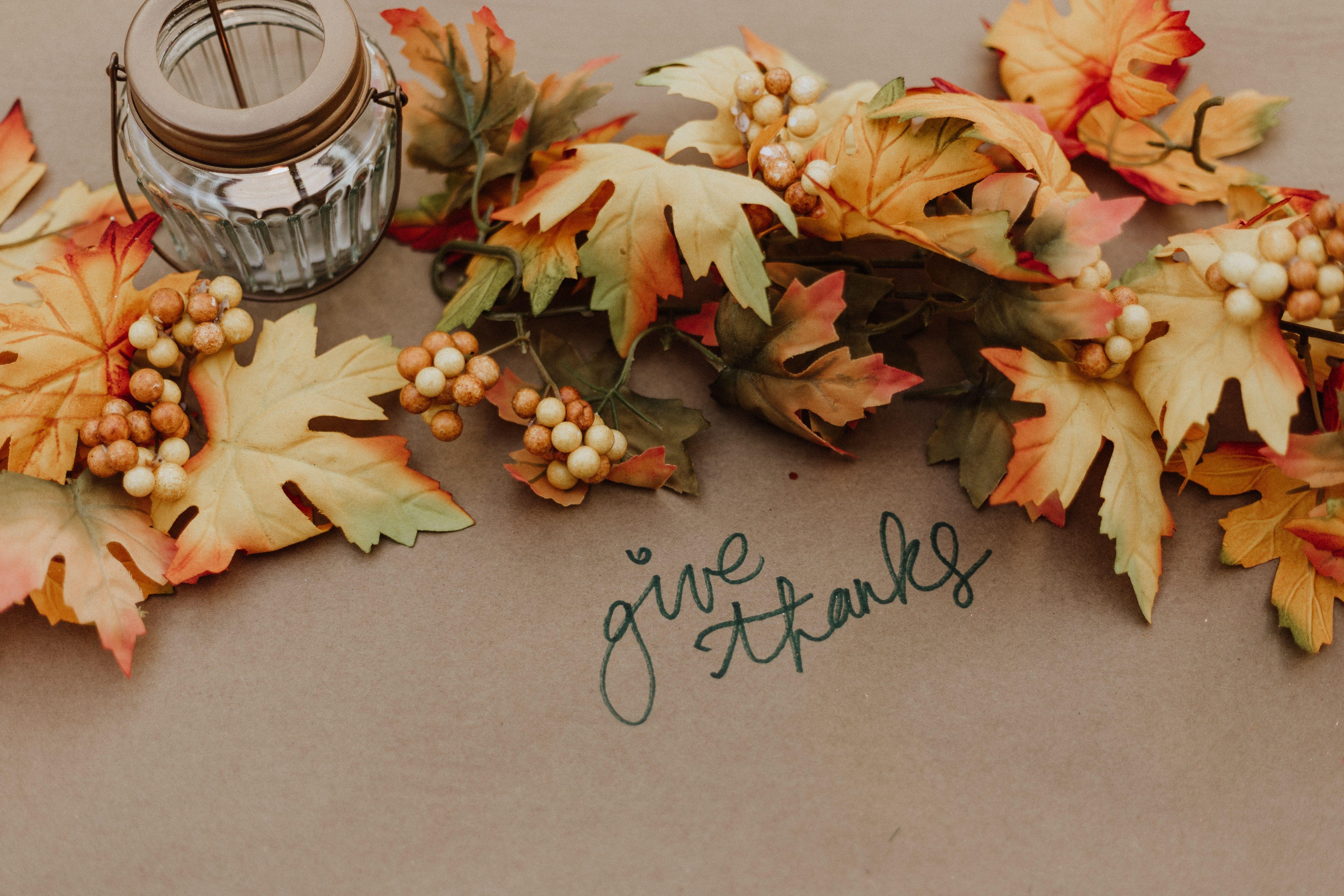 Post-Thanksgiving Wrap