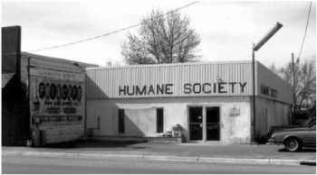 1975 - Our First Shelter