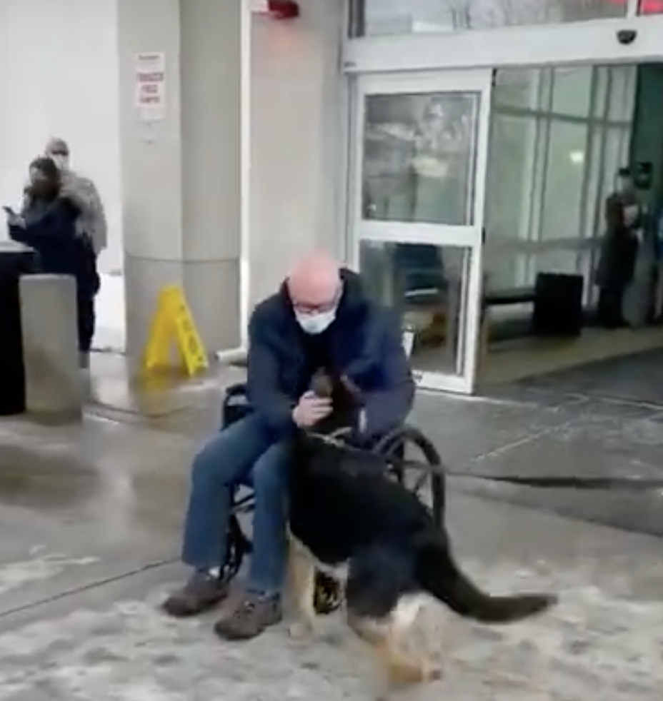 Video shows man's tearful reunion with dog who saved his life during stroke (ABC 7 New York)