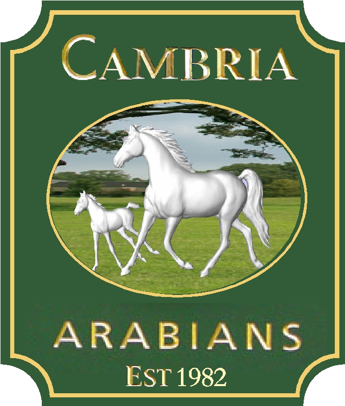P25037 - Carved  HDU Sign for Arabian Horse Farm with 3-D Mare and Foal, Gold-Leaf Text and Borders