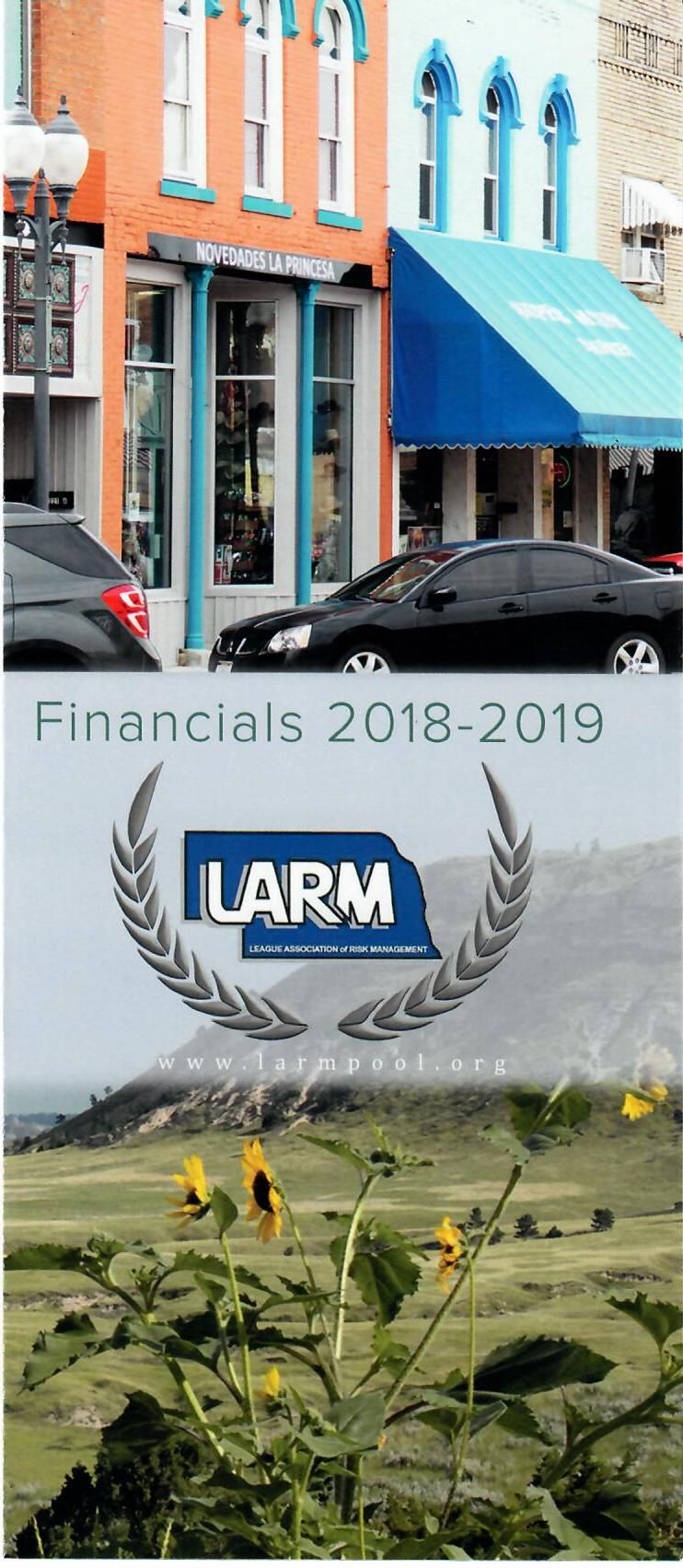 Solid, Stable, Secure- LARM's Financials for 2018/2019
