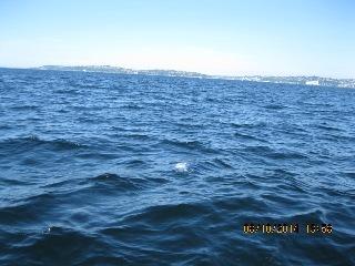 Gradually Sinking