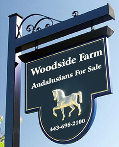 M2842 - Elegant Horse Breeding Farm Sign with Gold Carved Andalusian