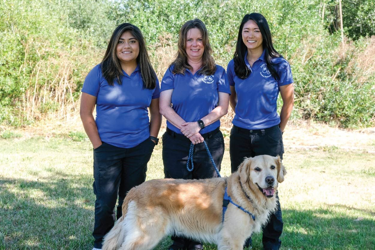 View Dogs at the New Life K9s Facility in San Luis Obispo
