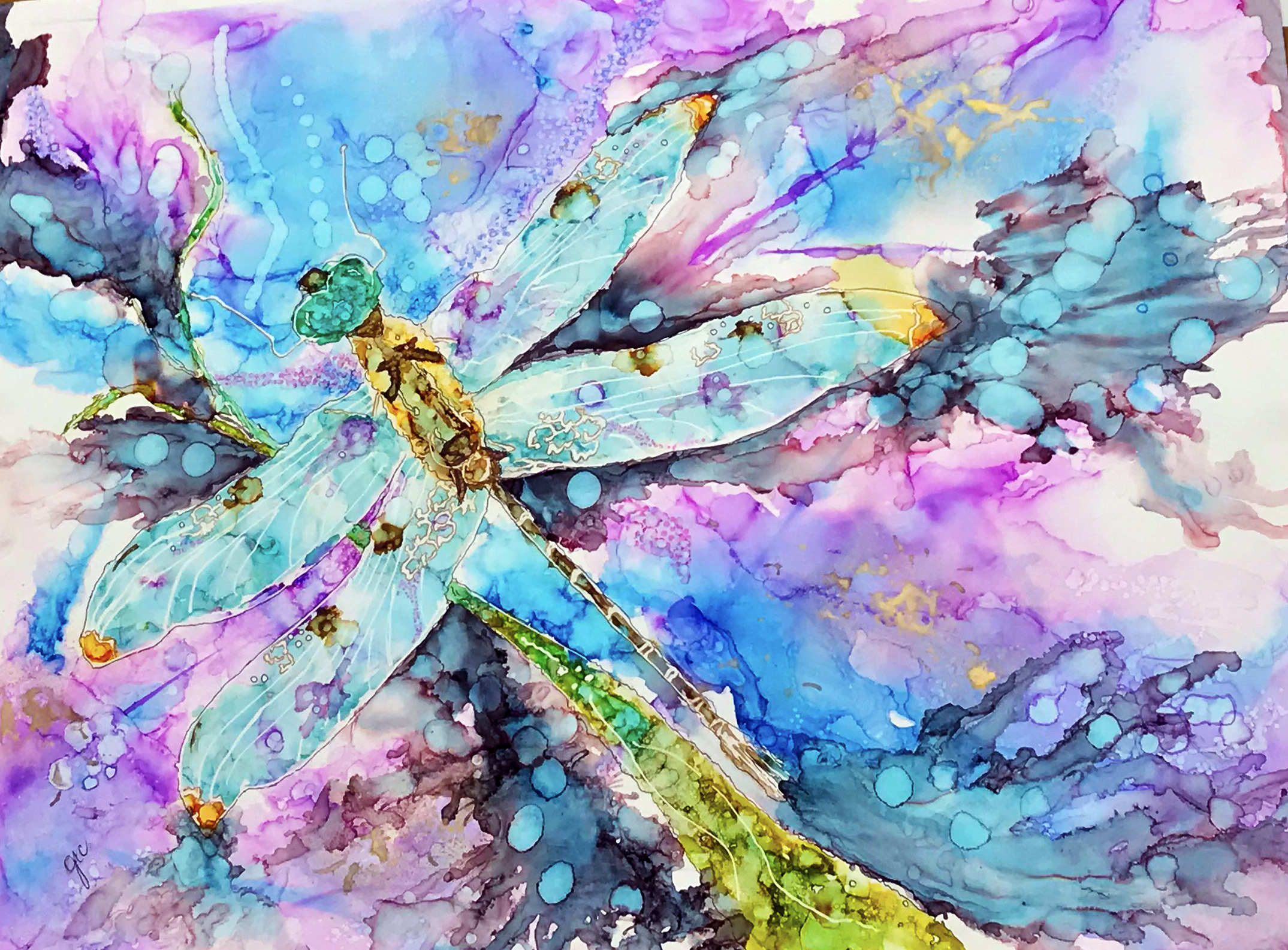 The Transformation of the Dragonfly