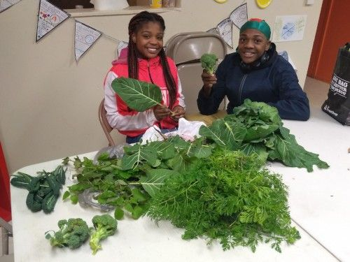 Teen Empowerment and Holiday Groceries from the Pincus Family Foundation