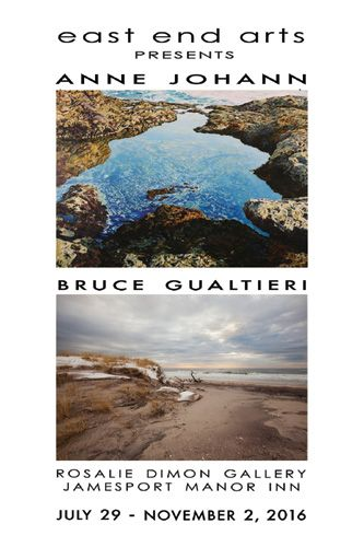 New Art Show at the Rosalie Dimon Gallery Featuring Artists Anne Johann & Bruce Gualtieri (posted August 1, 2016)