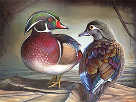 Wyoming Teen Wins Junior Duck Stamp Competition