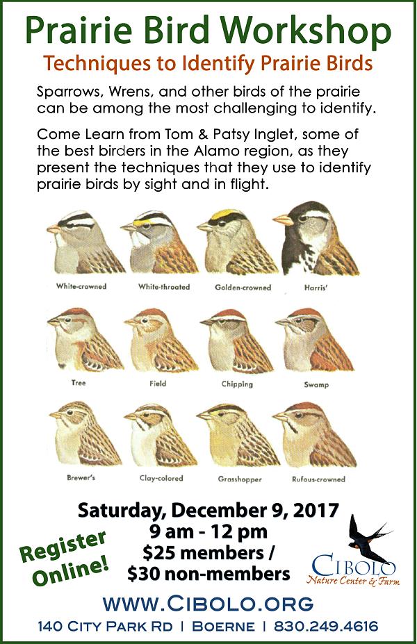 CNC: Prairie Bird Workshop