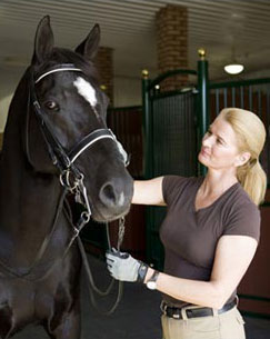 Major Anders Lindgren Scholarships Awarded to Dressage Instructors