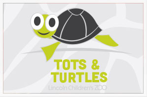 Tots & Turtles (new)