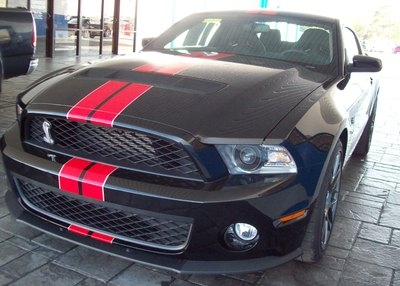 Mustang Striping