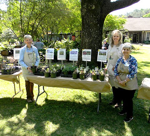 Annual Spring Plant Sale Members Only Day