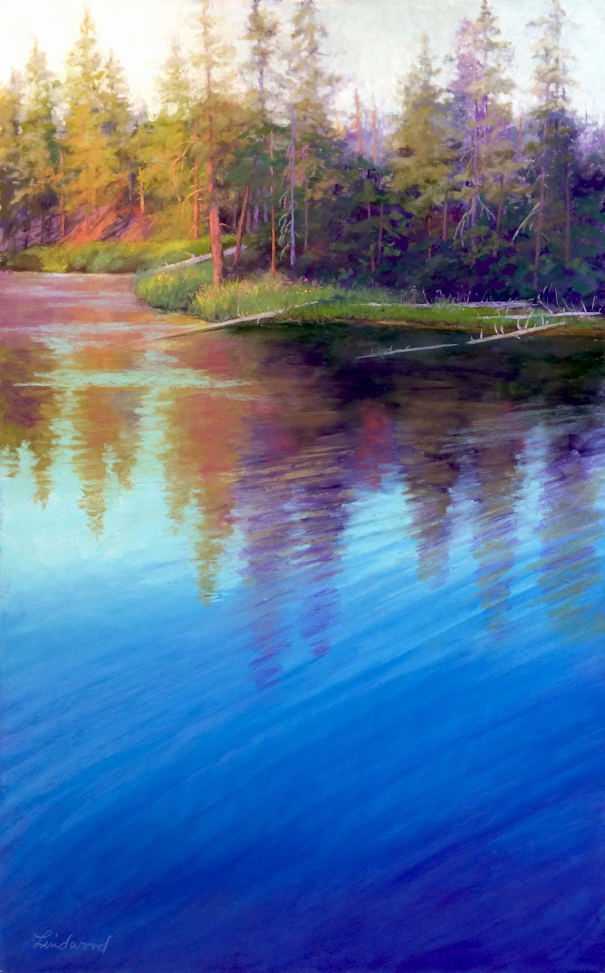Serene Reflections