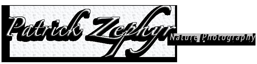 Patrick Zypher