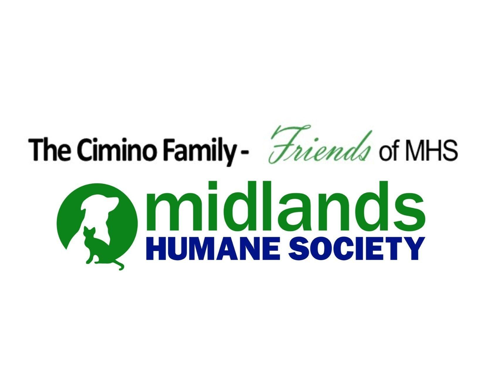 The Cimino Family