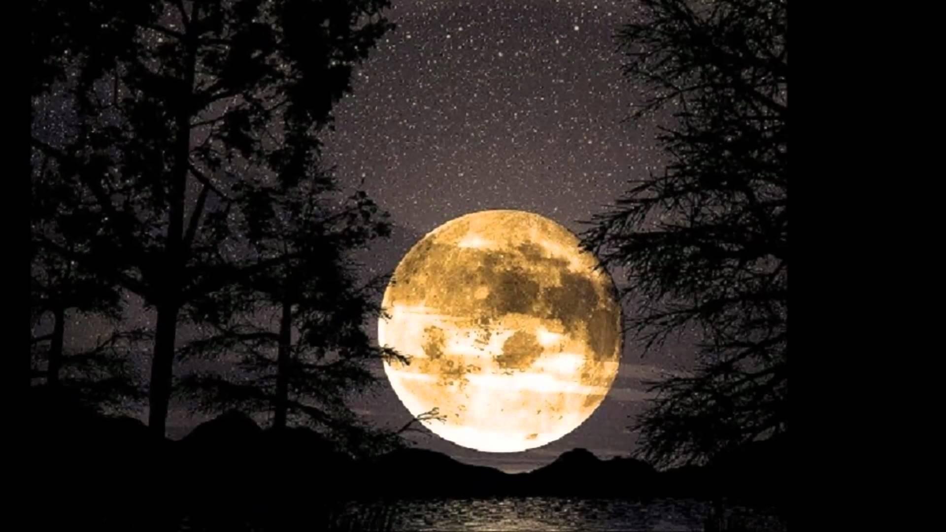 """""""Under the Harvest Moon"""" Dinner Dance"""