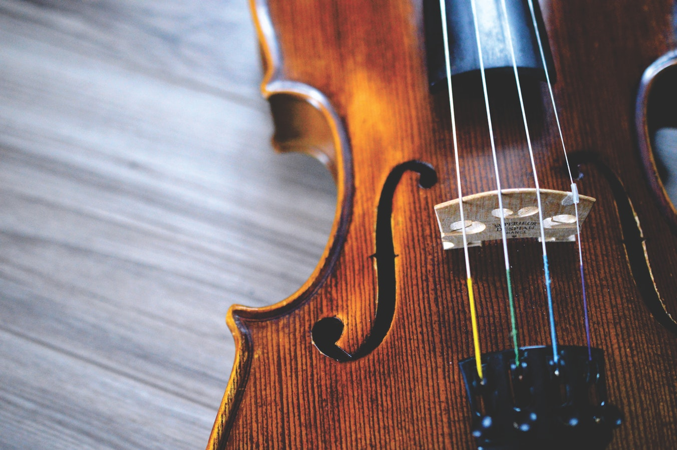 Chamber Music Spring Concert to Benefit The Arc