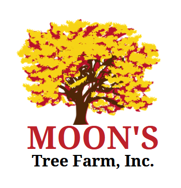 Moons Tree Farm