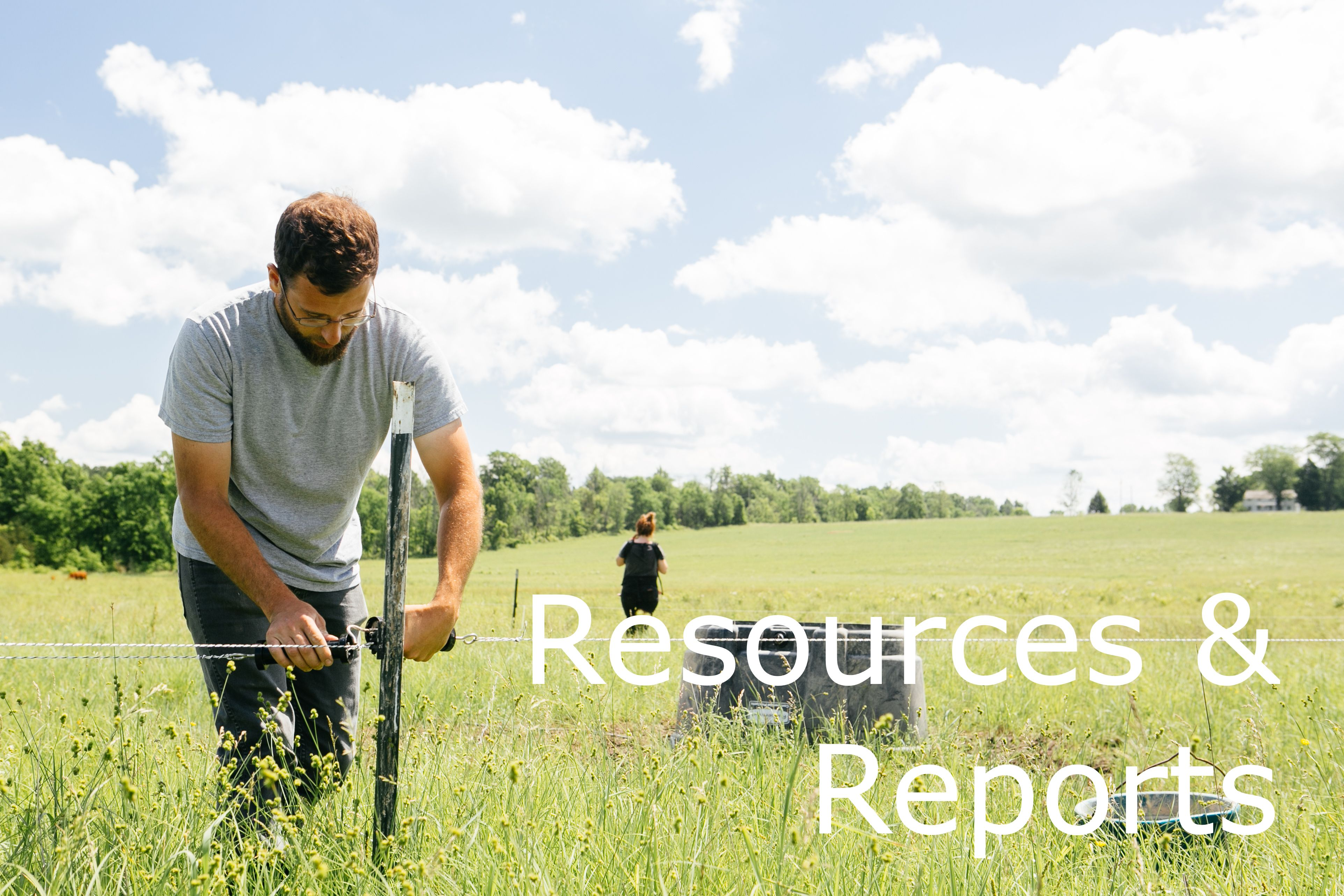 Resources and Reports