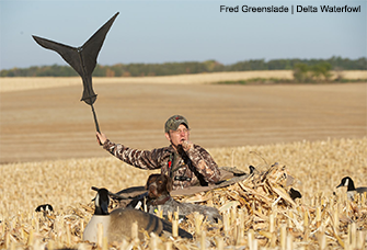 The One-Man Field Rig for Canada Geese