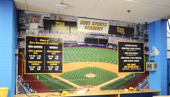 Sports Wall Murals custom wall murals